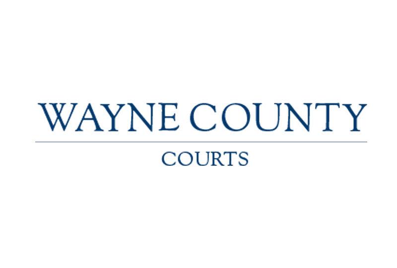 wayne-county-courts